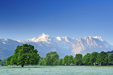 Meadow with chestnut trees in front of Alpspitze, Waxenstein and Zugspitze, Garmisch-Partenkirchen, Wetterstein range, Werdenfels, Upper Bavaria, Bavaria, Germany, Europe