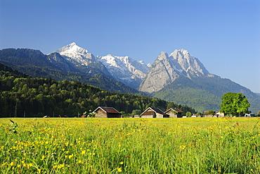 Meadow with flowers and hay sheds in front of Alpspitze, Zugspitze range and Waxenstein, Garmisch-Partenkirchen, Wetterstein range, Werdenfels, Upper Bavaria, Bavaria, Germany, Europe