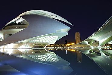 Palau de les Arts Reina SofÃŒa, Architect Santiago Calatrava, Av Autopista del Saler, Pont de Pont de Montolivet, Valencia, Spain