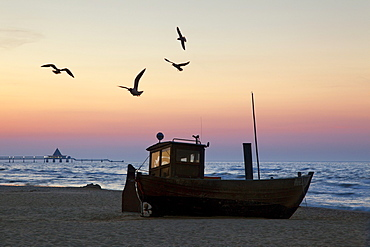 Seagulls above a cutter, view towards the pier, Heringsdorf seaside resort, Usedom island, Baltic Sea, Mecklenburg-West Pomerania, Germany