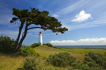 Lighthouse at the Dornbusch, Hiddensee island, Baltic Sea, Mecklenburg-West Pomerania, Germany