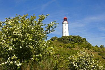 Lighthouse at Dornbusch, Hiddensee island, Baltic Sea, Mecklenburg-West Pomerania, Germany