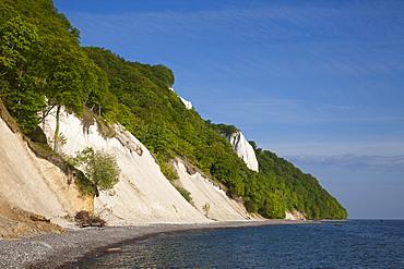 View towards Koenigstuhl and the chalk cliffs, Jasmund National Park, Ruegen island, Baltic Sea, Mecklenburg-West Pomerania, Germany
