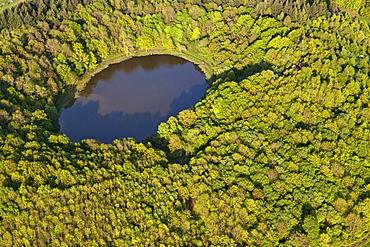 Aerial view of Windsborn crater lake, rural district of Daun, Eifel, Rhineland Palatinate, Gemany, Europe