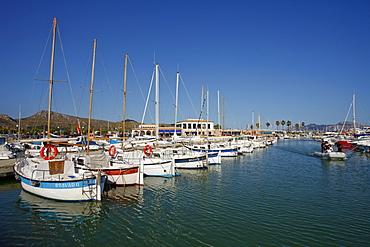 Harbour, port, Port de Pollenca, Pollenca, Mallorca, Balearic Islands, Spain, Europe