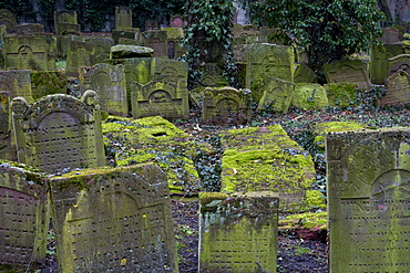 Jewish cemetery Battonnstrasse, it is the oldest jewish cemetery in Frankfurt, Frankfurt am Main, Hesse, Germany, Europe