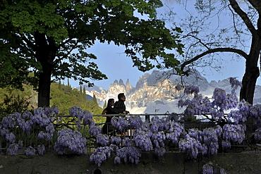 People on Talfer promenade in spring, Bolzano, Dolomites, South Tyrol, Alto Adige, Italy, Europe