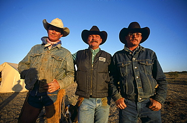 Cowboys from the LX Ranch, near Amarillo, Panhandle, Texas, USA