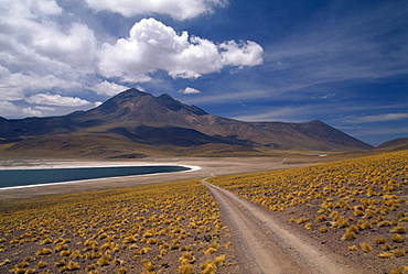 Laguna Miscanti, ca. 4.000m, Road to Sico Pass, South of San Pedro de Atacama, Andes, Chile