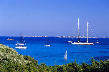 Sailboats, Plage de Piantarella, south coast, near Bonifacio Corsica, France