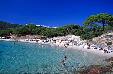 Beach Plage de Palambaggio, east coast near Porto-Vecchio, Corsica, France