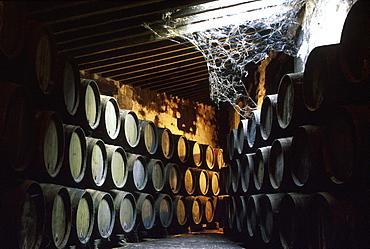 Sherry barrels in a store room, Bodegas Domecq, Jerez de la Frontera, Provinz Cadiz, Andalusia, Spain, Europe
