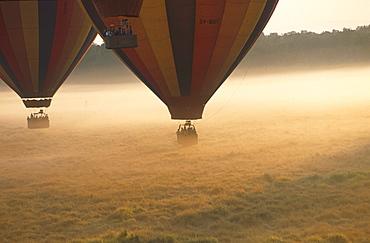 Balloon Safari, start in the morning, Massai Mara National Park, Kenia, Africa