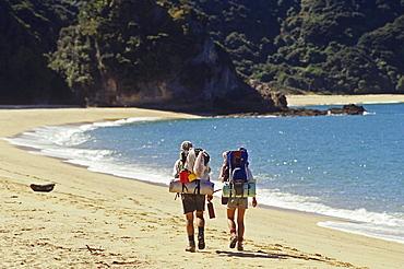 Hikers with rucksack on the beach in the sunlight, Abel Tasman Coast Track, Abel Tasman National Park, New Zealand, Oceania