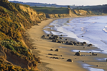 View of Moeraki boulders on the beach, South Island, New Zealand, Oceania