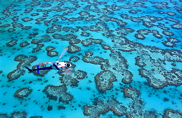 Helicopter over reef, Heron Island, Great Barrier Reef, Queensland, Australia