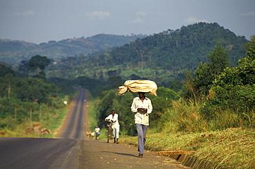 Local people carrying bags on their head, Kampala, Jinja, Uganda, Africa