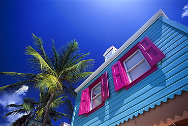 Colourful house and palm tree under blue sky, Pusser¥s Landing, West End, Tortola, British Virgin Islands, Caribbean, America
