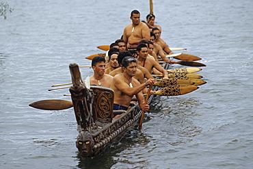 Maoris canoeing, Waka taua (war canoe), Waitangi Day, 6 February, Treaty between Maori and British Empire, New Zealand
