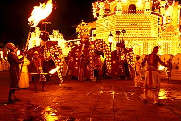 Kandy Perahera procession in front of Dalada Maligawa temple at night, Sri Lanka, Asia