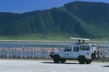 Flamingoes at Lake Magadi, Jeep Safari, Ngorongoro Crater, Tanzania