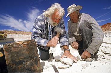 Two older men searching for opals, opal mining fields, Aboriginal Land, Stuart Highway near Marla Opalsiedlung, South Australia
