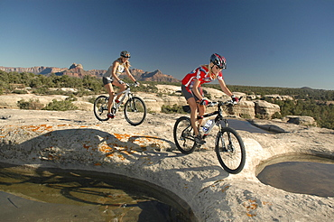 Mountainbiker, Gooseberry Trail, Zion Nationalpark, Springdale, Utah, USA