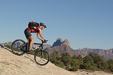 Woman on a Mountainbike Tour, Gooseberry Trail, Zion Nationalpark, Springdale, Utah, USA