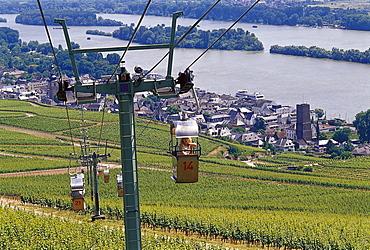 View at chair lift above idyllic landscape, Rudesheim, Rheingau, Hesse, Germany, Europe