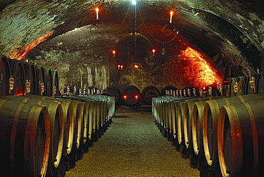 Barrels at the wine cellar of castle Johannisberg, Geisenheim, Rheingau, Hesse, Germany, Europe