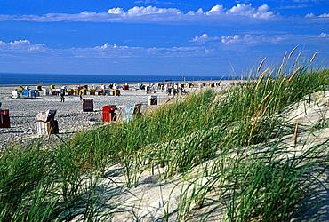 Beach with beach chairs, Northern village, Amrum, North Frisian Islands, Northern Frisia, Schleswig-Holstein, Germany