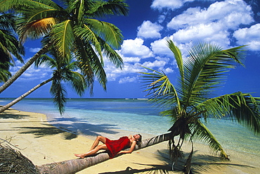 Lying woman, Palm beach, coconut palms, Dominican Republic, America