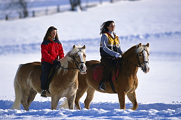 Two women riding their horses through the snow, Ramsau, Styria, Austria, Europe