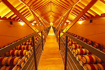 Storage room for wine barrels, Bodega Chivite, Navarra, Spain, Europe