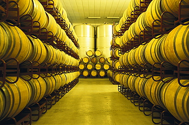 Storage room for wine barrels, Bodega Ochoa, Navarra, Spain, Europe