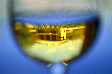 Reflection in a wine glass, Bodega Chivite, Navarra, Spain, Europe