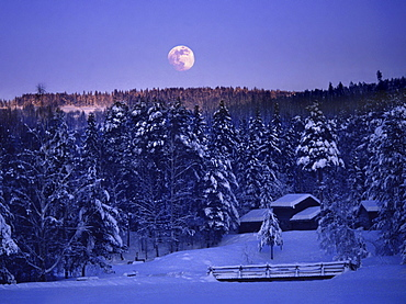 Moonrise above snow covered forest, Maihaugen, Lillehammer, Norway, Scandinavia, Europe