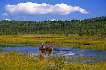 Canoeing at Opeongo River, Algonquin Provincial Park, Ontario, Canada, North America, America