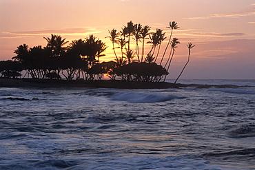 Sunset Silhouette, The Fairmont Orchid Hotel, Kohala Coast, Big Island Hawaii, Hawaii, USA