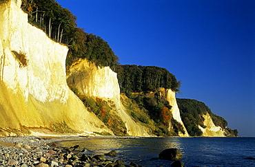 Europe, Germany, Mecklenburg-Western Pommerania, isle of Ruegen, chalk cliffs at Jasmund National Park, Kieler Ufer