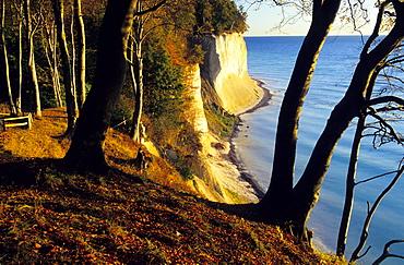 Europe, Germany, Mecklenburg-Western Pommerania, Ruegen, chalk cliffs at Jasmund National Park