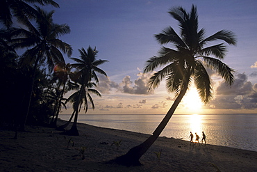 Coconut Tree and Beachcomber Sunset Silhouette, Aitutaki, Cook Islands