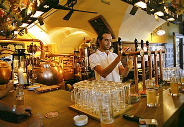 Barkeeper pouring beer, Hopfen Pub, Bolzano, Alto Adige, Italy