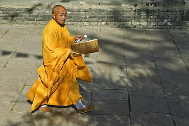 monk in yellow rope calls with a wooden drum for the prayer, during birthday of Wenshu, Wutai Shan, Five Terrace Mountain, Buddhist Centre, town of Taihuai, Shanxi province, China, Asia