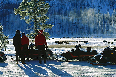 Snow mobile, Yellowstone National Park, Wyoming, USA