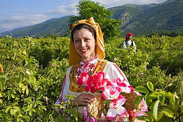 Rose picking girl, Rose Festival, Karlovo, Bulgaria, Europe