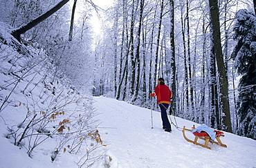 sledging at hut Gsohlalpe, Hohenems, Bregenzer Wald, Vorarlberg, Austria