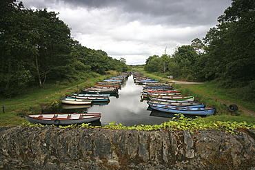 Colourful rowing boats under grey clouds, Killarney, Ring of Kerry, Ireland, Europe