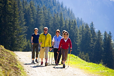 Group of people nordic walking at Bussalp (1800 m), Grindelwald, Bernese Oberland (highlands), Canton of Bern, Switzerland