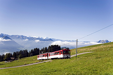 Rack railway Vitznau Rigi Bahn, the first mountain railway of Europe, on the way, Rigi Kulm, Canton of Schwyz, Switzerland